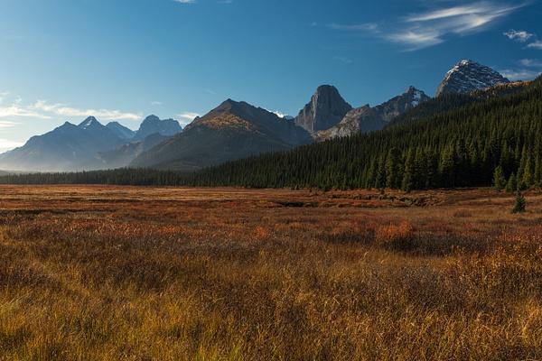 Fall Colors,Canadian Rockies,  Canmore, Alberta, Canada...