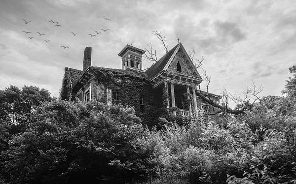 1313 Mocking Bird Lane (US0435) - Black White -Bella Mondo Images