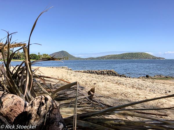Tranquil Beach - Home - Rick Stoeckel