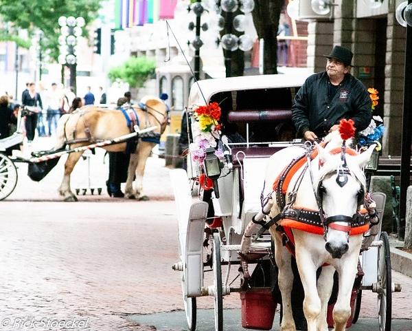 Horse & Rider - Hometown Boston - Rick Stoeckel