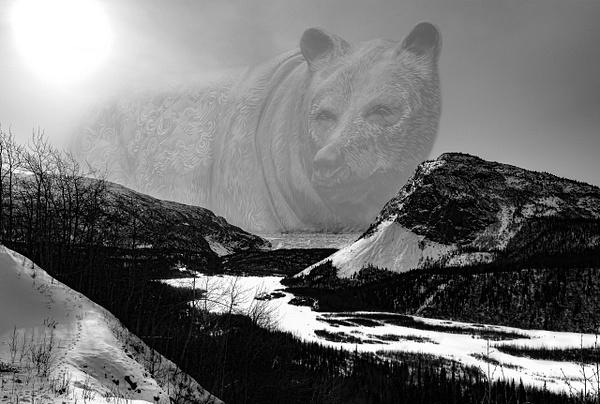 Glacier Bear by Snowkeeper