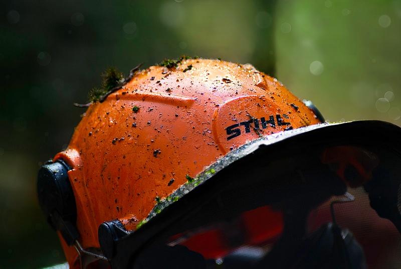 STIHL Hard Hat