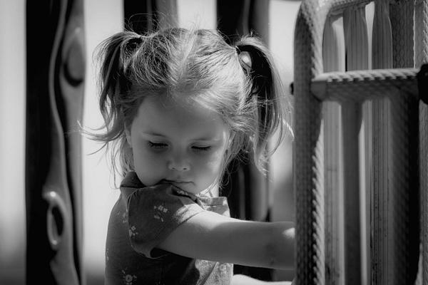 Ava Rose by SaddleRockPhotography