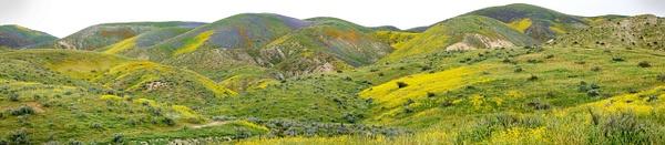 111ab Carrizo Plain Pano 2 20170407 5 image pano reduced size 111abof365 - California Landscapes - Gregory Edwards Photography