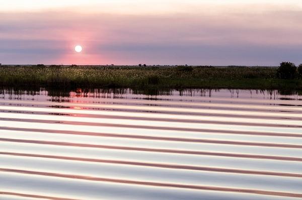 ripples - Nature - Steve Juba Photography