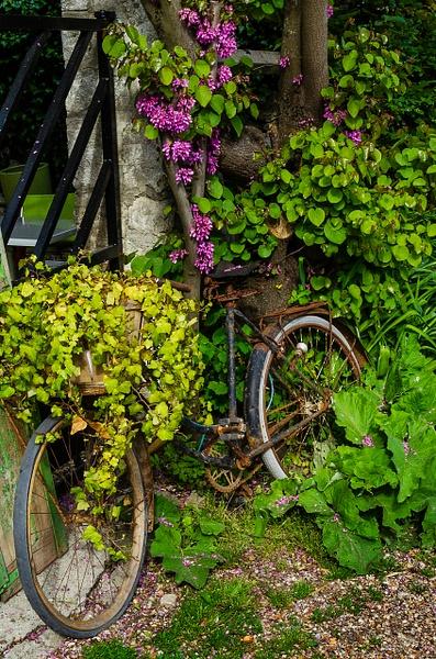 Giverny Bike - Nature - Steve Juba Photography