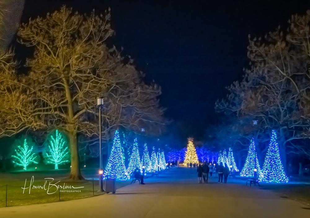 Longwood Christmas at Night