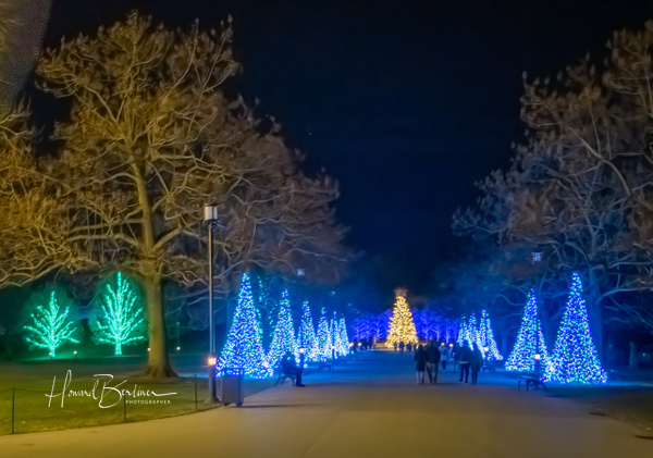 Longwood Christmas at Night - Home - Howard Berliner Photography