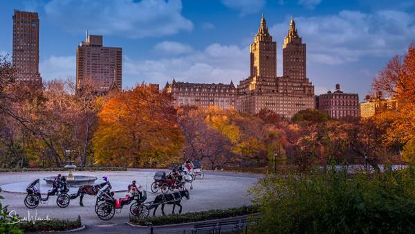 Central Park (Autumn)
