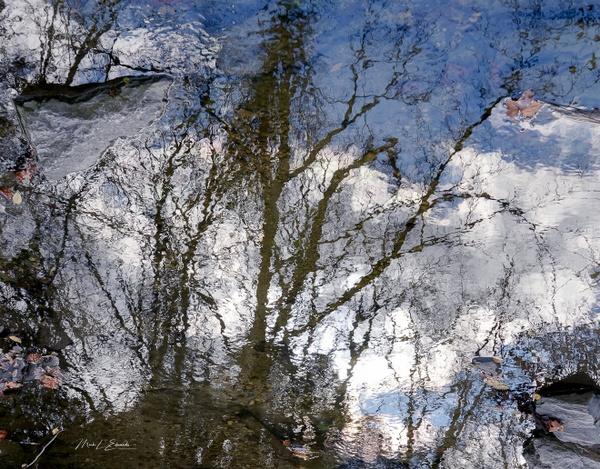210206_Autumn Impressions - Home - Mark Edwards Photography