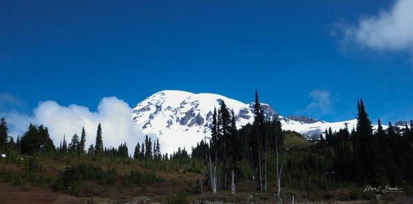 150525_Mount Rainier, WA - Tranquil Landscapes - Mark Edwards Photography