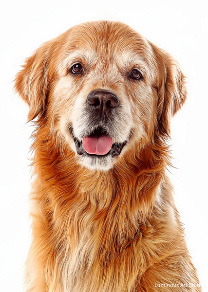 Golden-Retreiver-015 - Pet Illustrations - LuminousLight