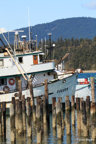 Fishing Boat Oregon, Guemes Channel - Golden Hour - Rising Moon NW Photography