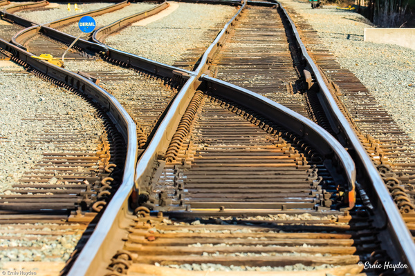 Railroad Track - Natural Design - Golden Hour - Rising Moon NW Photography