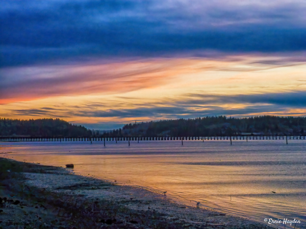 Sunset Looking Southwest Over the Tommy Thompson Trail - Fidalgo Bay - Golden Hour - Rising Moon NW Photography