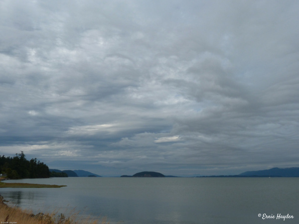 Looking North Over Padilla Bay - Beautiful Clouds - Golden Hour - Rising Moon NW Photography