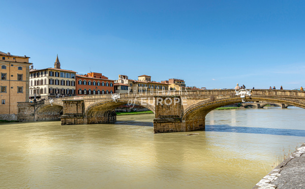 Ponte-alla-Carraia-bridge-Florence-Italy - Photographs of Florence and Pisa, Italy.