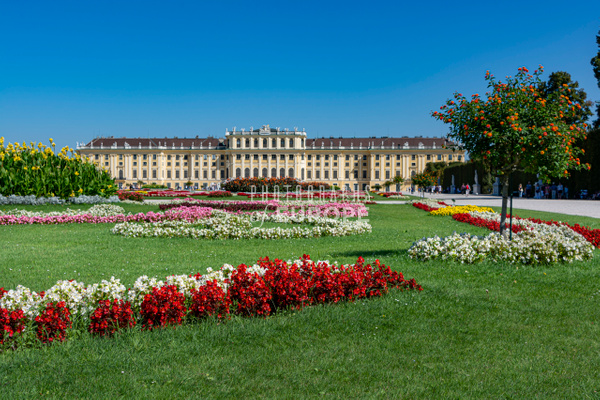 Colourful-flowers-in-garden-Schönbrunn-Palace-Vienna-Austria - Photographs of Granada, Spain