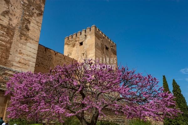 Towers-Torre-del-Adarguero-Alhambra-Granada-Spain - Photographs of Granada, Spain