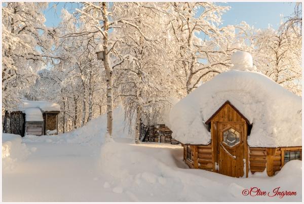 A Xmas card scene - Arctic - Ingymon Photography