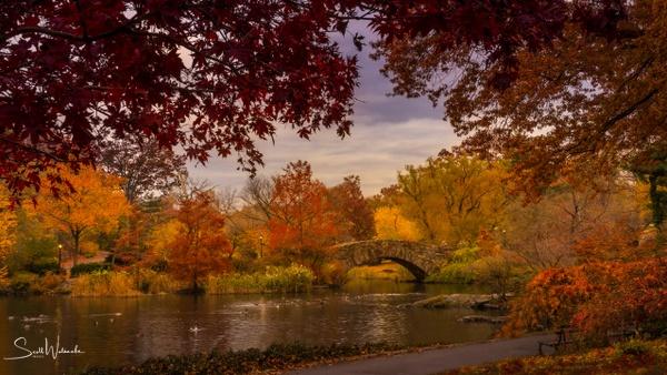 Gapstow Bridge in Autumn by ScottWatanabeImages