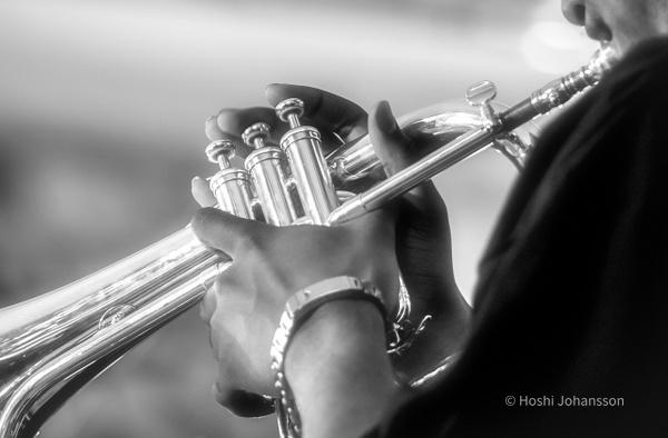trumpet-hands-jazz