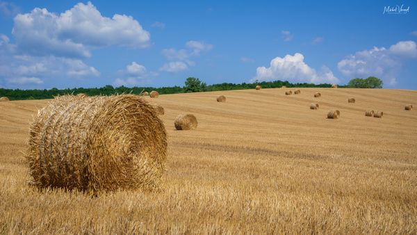 hay bales in France - Landscape - Michel Voogd Photography