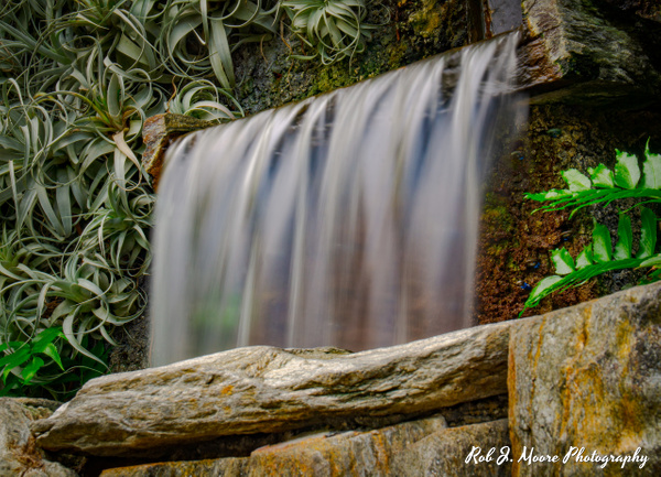Waterfall 01 - Longwood Gardens 2020 - Flowers & Gardens - Robert Moore Photography