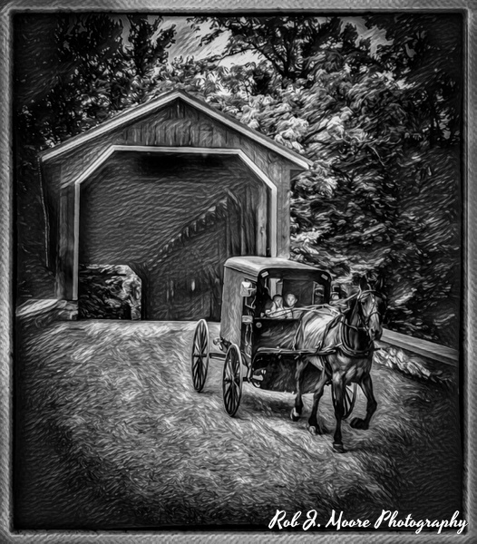 The Buggy - Arlington National Cemetery - Robert Moore Photography