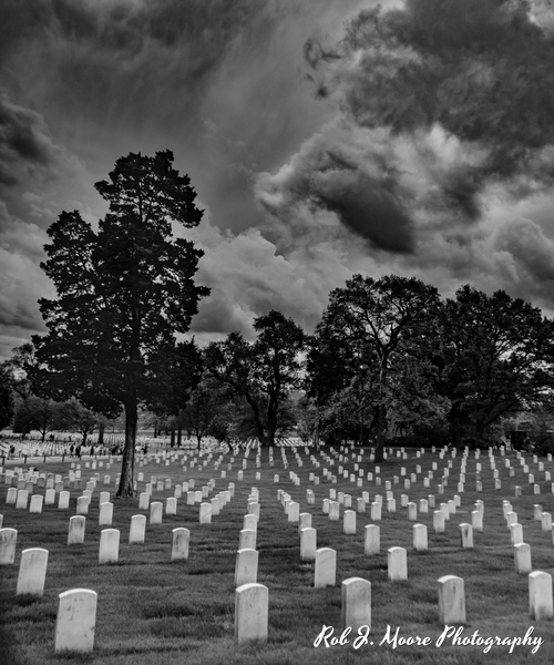 2019 Arlington 08 - Arlington National Cemetery - Robert Moore Photography