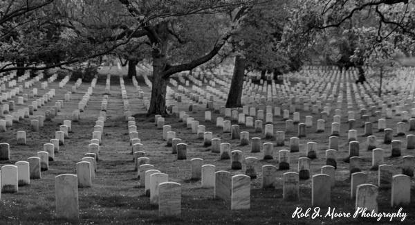 2019 Arlington 01 - Arlington National Cemetery - Robert Moore Photography