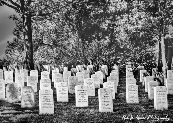 2019 Arlington 018 - Arlington National Cemetery - Robert Moore Photography